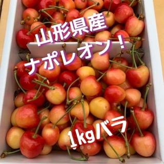 山形県産さくらんぼ ナポレオン 1キロ(フルーツ)