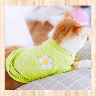 新品春夏 犬服猫服 ティシャツ  L グリーン