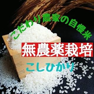 こだわり農家の自慢米 白米10㎏(無農薬栽培)