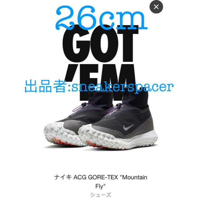 NIKE(ナイキ)のnike ACG GORE-TEX mountain fly 26cm メンズの靴/シューズ(スニーカー)の商品写真