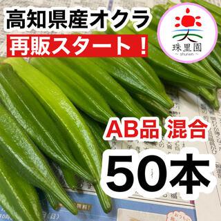 高知県産 オクラ おくら 50本 即購入OK 産地直送 新鮮