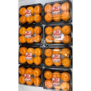 佐賀県産 ハウスみかん 1パック約250g 5-6玉入り 8パック(フルーツ)