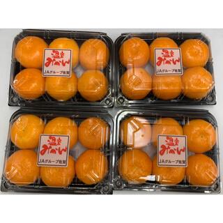 佐賀県産 ハウスみかん 1パック約250g 5-6玉入り 4パック(フルーツ)