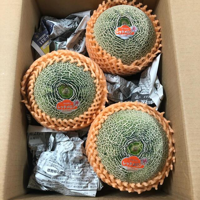 茨城県ルピアレッドメロン3玉入り箱込み約5kg 食品/飲料/酒の食品(フルーツ)の商品写真
