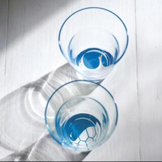 タチキチ(たち吉)のたち吉 ペアグラス グラス 吉祥 和柄 タンブラー 木箱 ギフト(グラス/カップ)