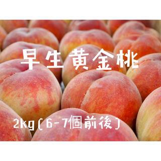 桃(早生黄金桃)2キロ箱