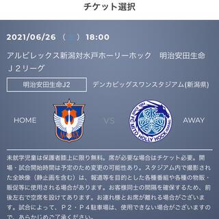 6/26 アルビレックス新潟VS水戸 E2層ペア(サッカー)
