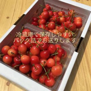 6/27まで発送【訳あり】山形県産さくらんぼ🍒佐藤錦1キロ(フルーツ)