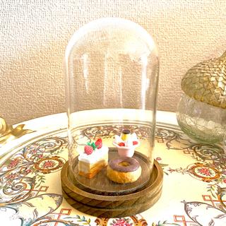 ミニ ドーム ガラスケース フラワードーム covent garden