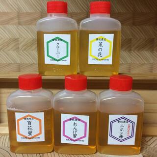 【非加熱・生はちみつ】5種お試しセット・50g×5(5本)(その他)