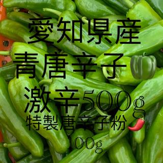 愛知県産無農薬 (激辛です)青唐辛子500g(野菜)