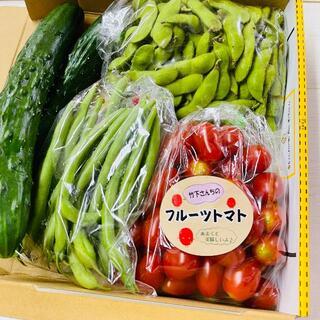 枝豆・フルーツトマト・きゅうり・いんげん コンパクト便(野菜)