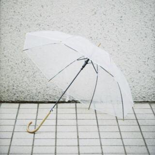 TODAYFUL -  新品 未使用  todayful トゥデイフル 傘 未使用