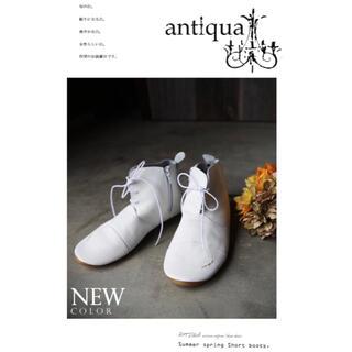 antiqua - 【antiqua】完売品 日本製 本革 ショートブーツ