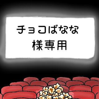 チョコばなな様専用(その他)