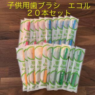 歯科専売 子供用歯ブラシ エコル 20本セット(歯ブラシ/歯みがき用品)