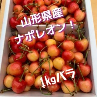 山形県産 さくらんぼ ナポレオン 1キロ(フルーツ)