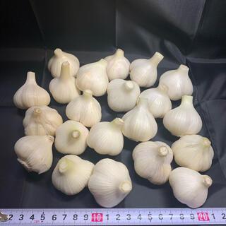 広島県産(安芸高田市)無農薬栽培ニンニク Sサイズ