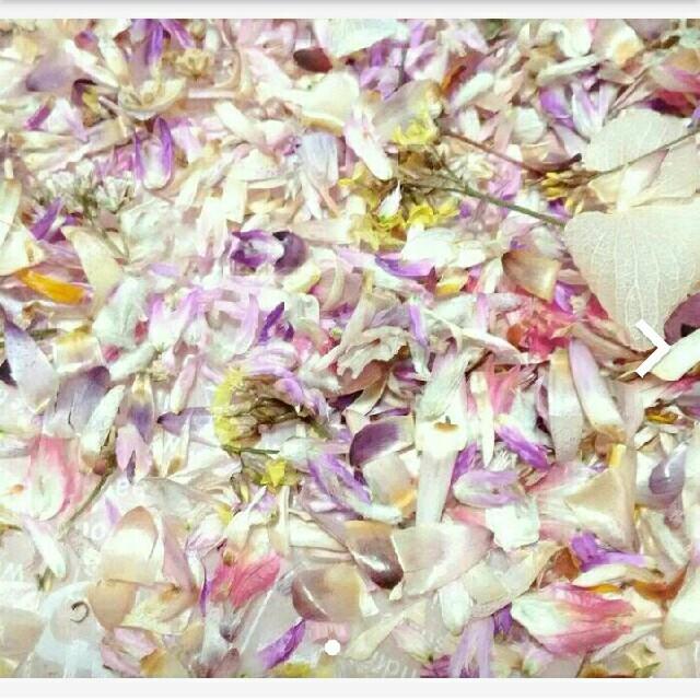約2.3g ドライフラワー 花材 材料パーツ 花びら 花がら ハンドメイドのフラワー/ガーデン(ドライフラワー)の商品写真