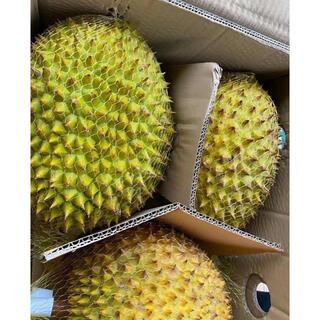 ベトナム産 新鮮ドリアン 2kg~2.5kg(フルーツ)
