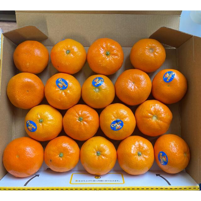 みかん キューティズ 1kg  17〜18個 手剥きオレンジ 食品/飲料/酒の食品(フルーツ)の商品写真