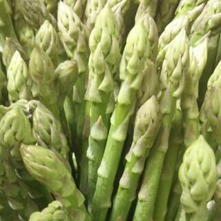新鮮!グリーンアスパラガス  1.5㎏(野菜)