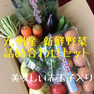 九種産 新鮮野菜 詰め合わせセット 赤玉子入り(野菜)