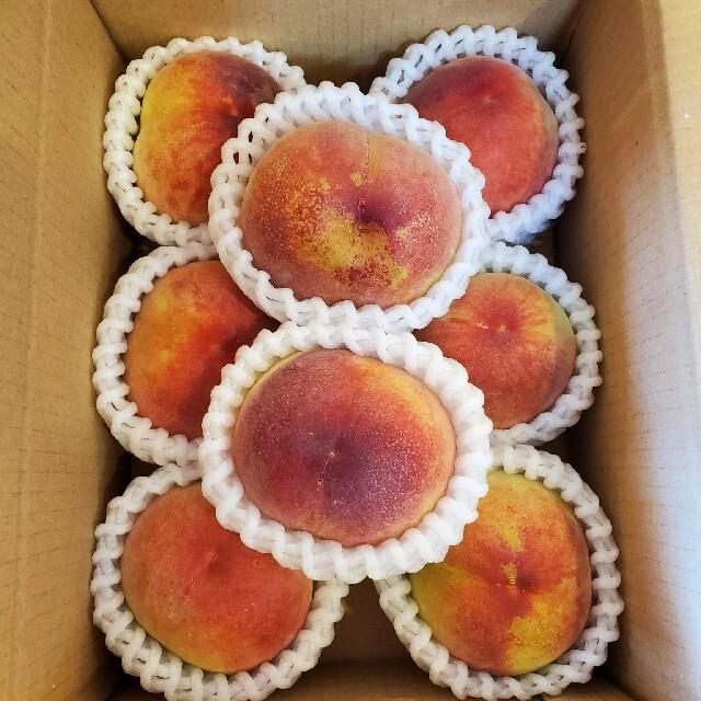 山梨の桃 本格的にシーズン到来 始まりました!!「日川白鳳!!」 食品/飲料/酒の食品(フルーツ)の商品写真