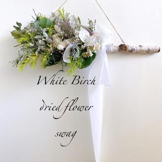 ドライフラワー White Birch 白樺 スワッグ 横長スワッグ (ドライフラワー)
