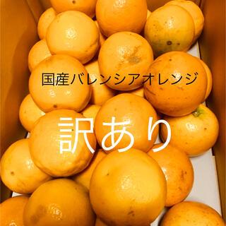 訳あり L 国産バレンシアオレンジ 5kg 送料無料 有田みかん(フルーツ)
