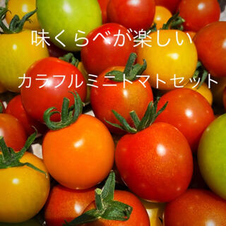 ミニトマトカラフルMIX約1キロ(野菜)