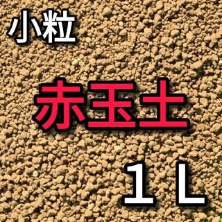赤玉土 小粒 1リットル(その他)