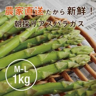【チルド便】 農家直送 アスパラガス M~L 1㎏ 朝採り 期間・数量限定(野菜)