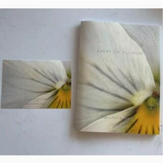 ヴァンクリーフアンドアーペル(Van Cleef & Arpels)のヴァンクリーフアンドアーペル Light of Flowers パンフレット(その他)