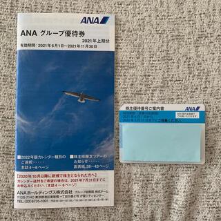 エーエヌエー(ゼンニッポンクウユ)(ANA(全日本空輸))のANA株主優待1枚+冊子 (その他)