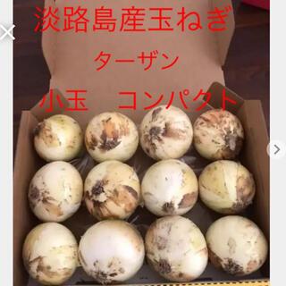 淡路島産玉ねぎ ターザン 小玉  コンパクト(野菜)