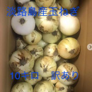 淡路島産玉ねぎ ターザン 10キロ   訳あり(野菜)