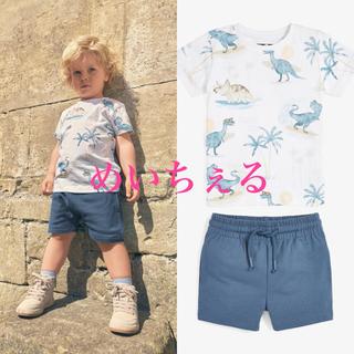 NEXT - 【新品】next ブルー恐竜 柄物Tシャツ&ショートパンツセット(ヤンガー)