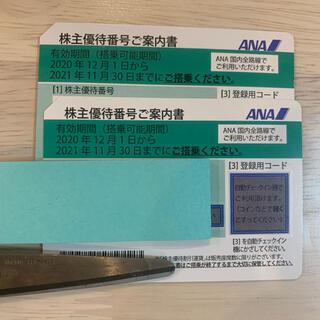 ANA株主優待券 2枚 ペア 往復 2022年5末迄延長(航空券)