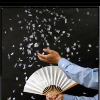 新品 紙吹雪 マジック用品(小道具)