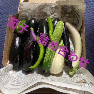 白茄子と紺茄子の詰め合わせ 無農薬 専用BOXに詰められるだけ(野菜)