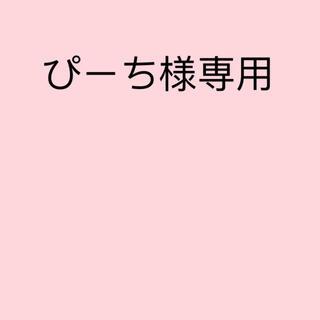 ぴーち様専用(ネックレス)