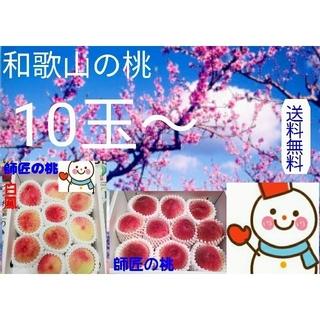 師匠の桃♥和歌山の早生白鳳 10〜玉♥健康農家雪だるまから直送(フルーツ)