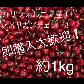 アメリカンチェリー 約1kg (フルーツ)