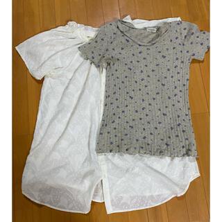 サマンサモスモス(SM2)のSM2のチュニックとTシャツの2枚セット(Tシャツ/カットソー)
