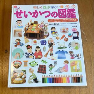 楽しく遊ぶ学ぶせいかつの図鑑(絵本/児童書)