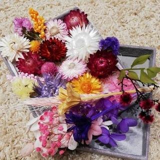 ちょっと大きめ花材 花材セット ドライフラワー リースなどに