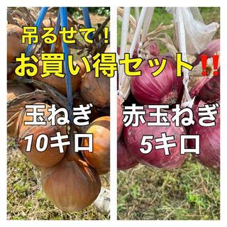 【吊るして保存‼️玉ねぎ、赤玉セット‼️】(野菜)