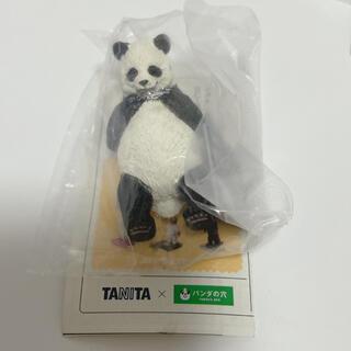Takara Tomy - 今日は何キロ? パンダ