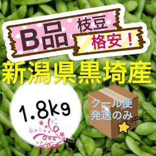 枝豆 格安【B品1.8kg】新潟県黒埼産 えだまめ(野菜)